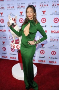 Target Sponsors The 2013 NCLR ALMA Awards